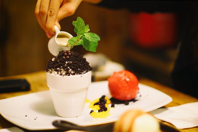 cake, cupcake plant