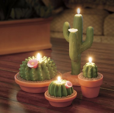 cactus party favor, cactus candles