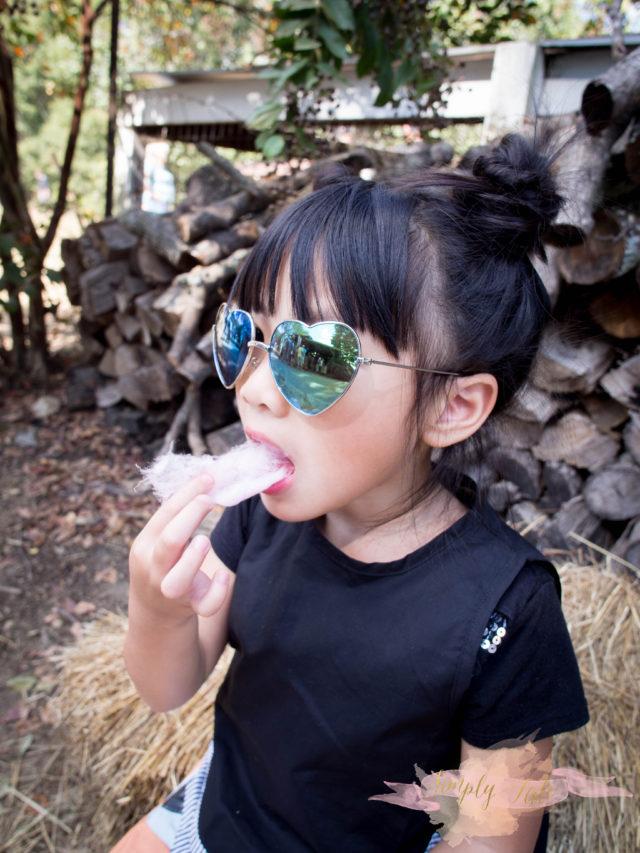 pink barn, photographer, atlanta photographer, pumpkin patch, fall mini session, berry patch farms