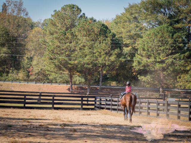 magnolia farm, milton, horseback riding, pony tales, alpharetta, young riders