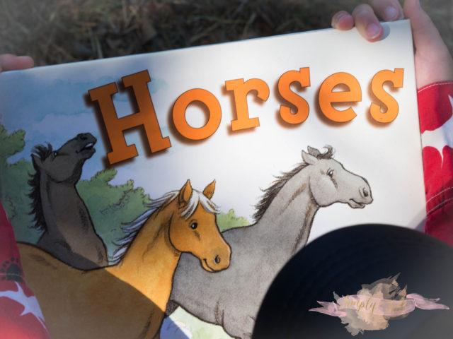 magnolia farm, milton, horseback riding, pony tales, alpharetta, young riders, goat farm, petting zoo, groupon, paint horse, horse painting