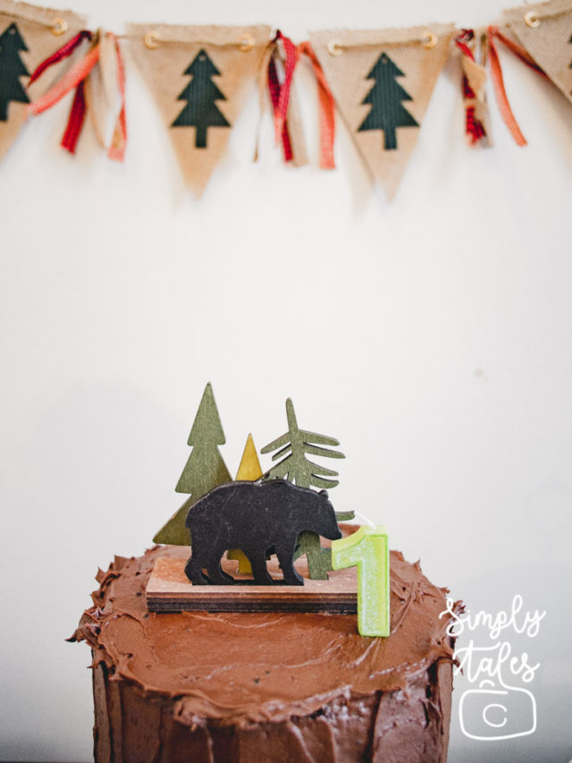 plaid, lumberjack,timber, wilderness, birthday, 1st birthday, birthday boy idea