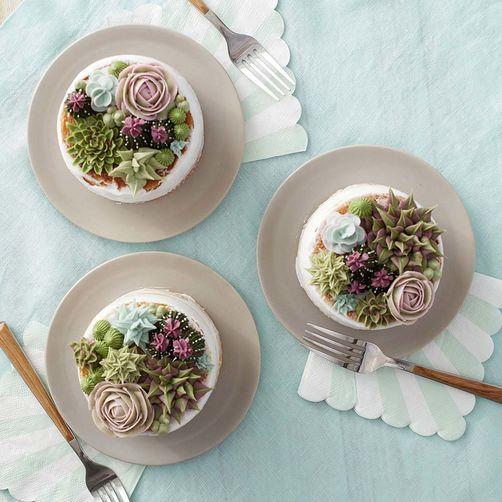 cactus, diy, succulent cake, minimalist, diy cake, wilton, icing tips, tutorial