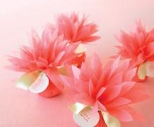mwd105402_spr10_tulip01_xl.jpg