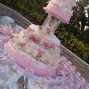 Pink wedding, precious moment wedding