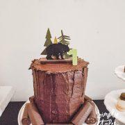 plaid, lumberjack,timber, wilderness, birthday, 1st birthday, birthday boy idea